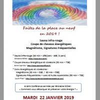 Journees detox et energie brindas janvier 2019